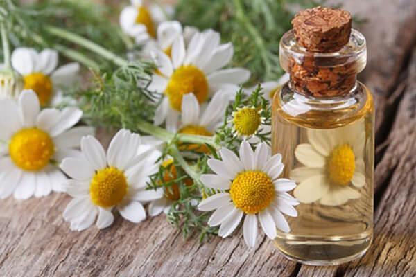 Maria Galland Super Rejuvenating Cream